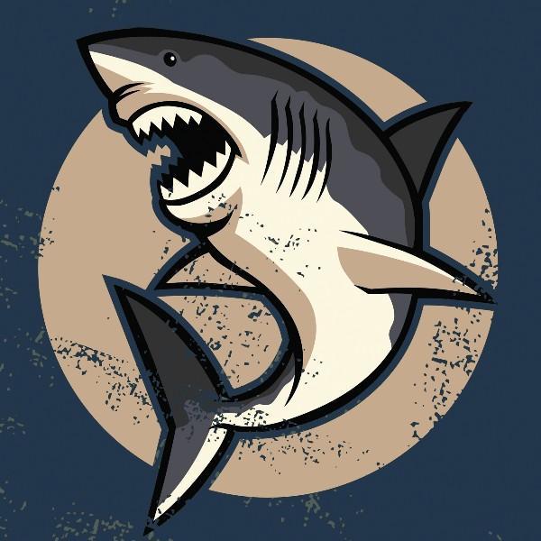 鲨鱼辣椒看世界