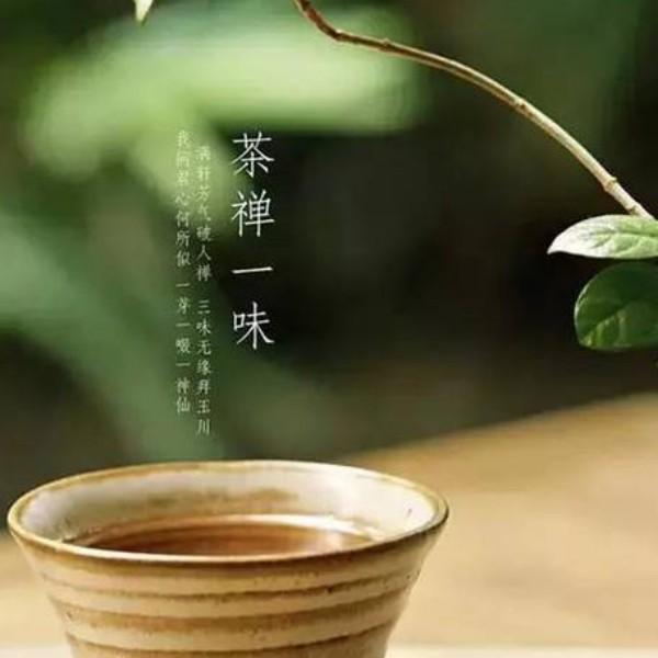 一杯茶一缕阳光0513