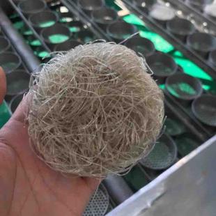 红薯淀粉加工设备网
