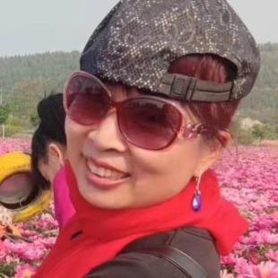 宏雁2012