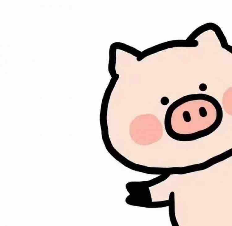 全宇宙最可爱de晴晴猪