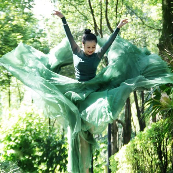 蝶花舞妖舞蹈