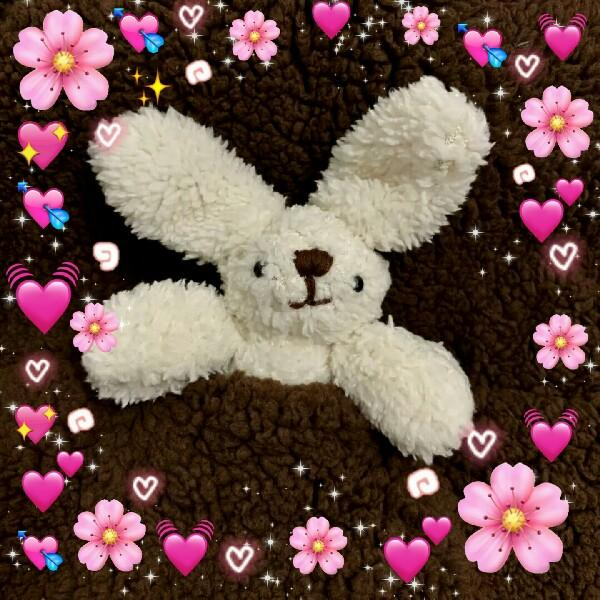兔妞妞来了