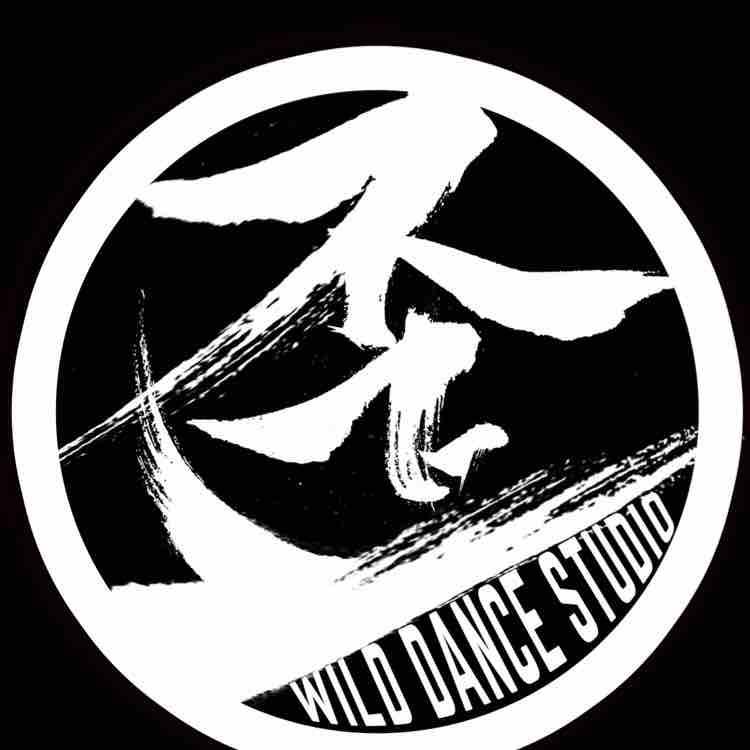 Wild舞蹈工作室