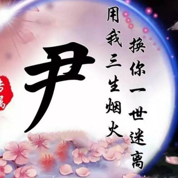 yincmei
