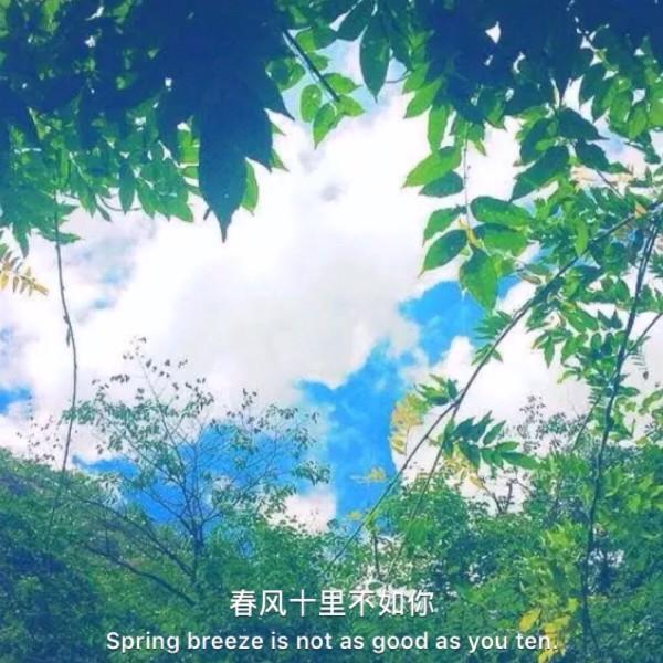 刘伟Levi64468