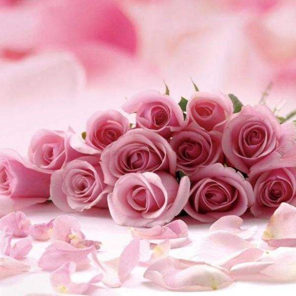 花都18203