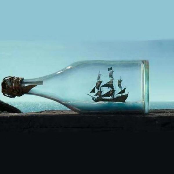没稀饭の瓶瓶