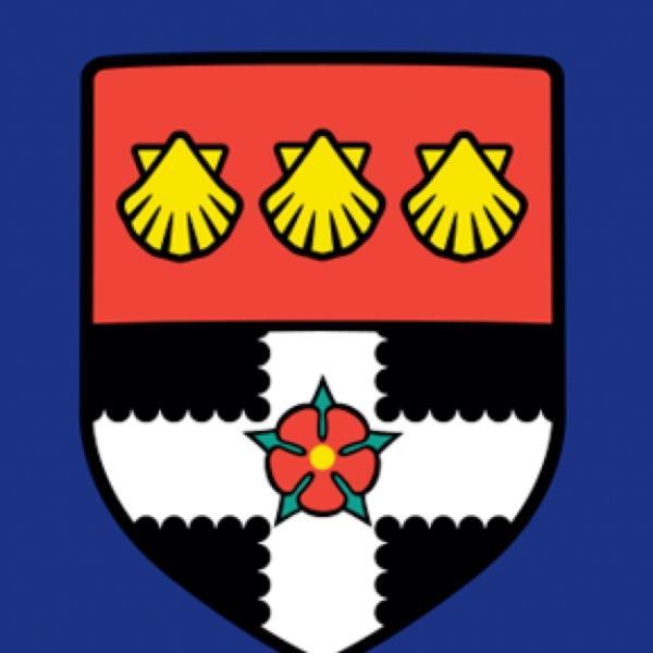 英国雷丁大学亨利商学院