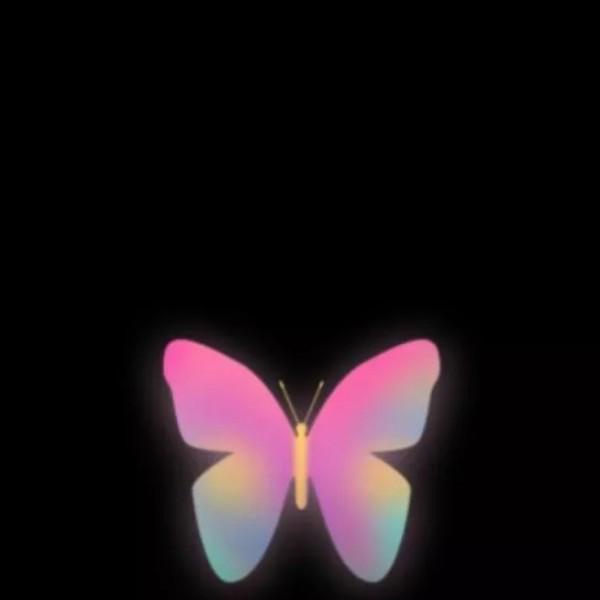 彩虹蝴蝶2020
