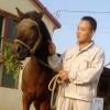 爱犬一族00408037