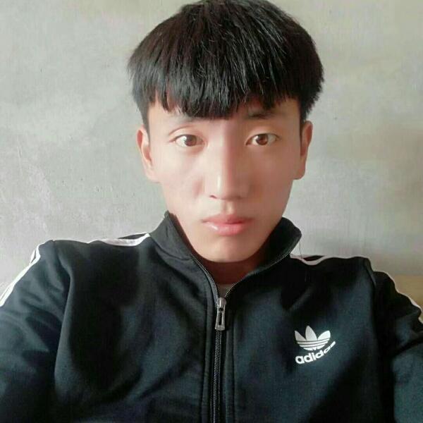 ai李志迪
