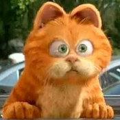 加菲猫让俺收了吧