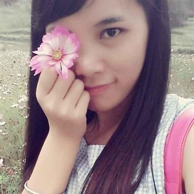 玫瑰的花香56898753