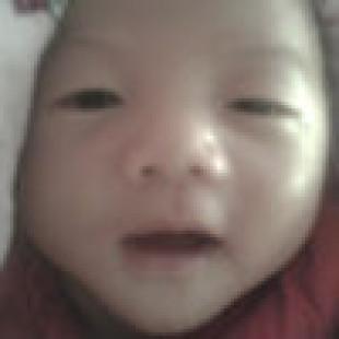 icewang007