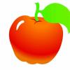 苹果55490600